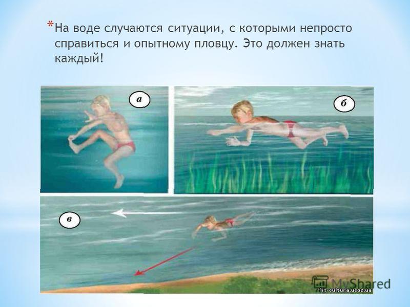 * На воде случаются ситуации, с которыми непросто справиться и опытному пловцу. Это должен знать каждый!
