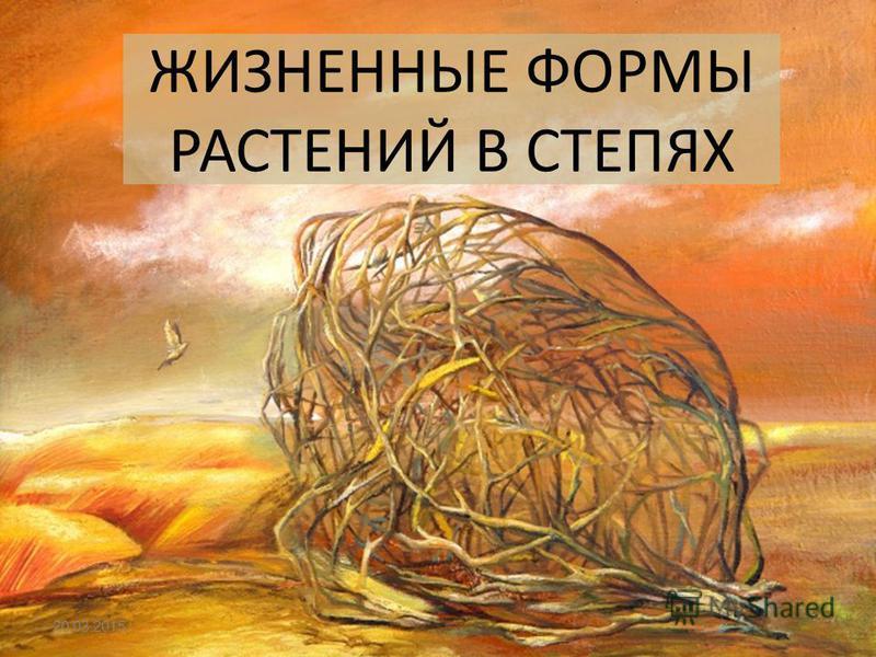 ЖИЗНЕННЫЕ ФОРМЫ РАСТЕНИЙ В СТЕПЯХ 20.03.2015