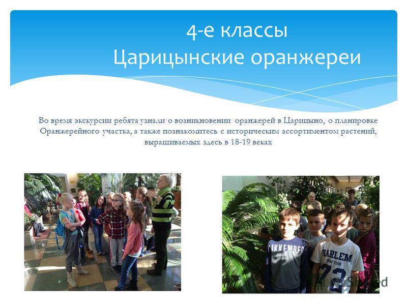 4-е классы Царицынские оранжереи Во время экскурсии ребята узнали о возникновении оранжерей в Царицыно, о планировке Оранжерейного участка, а также познакомитесь с историческим ассортиментом растений, выращиваемых здесь в 18-19 веках