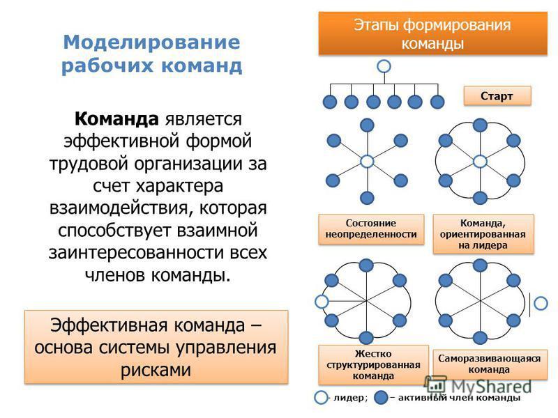 Моделирование рабочих команд Команда является эффективной формой трудовой организации за счет характера взаимодействия, которая способствует взаимной заинтересованности всех членов команды. Этапы формирования команды – лидер;– активный член команды С