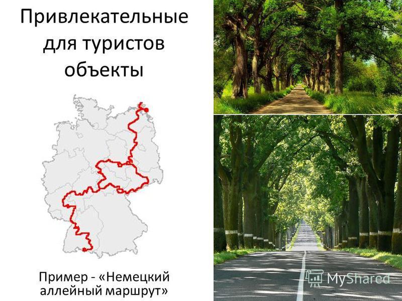 Привлекательные для туристов объекты Пример - «Немецкий аллейный маршрут»