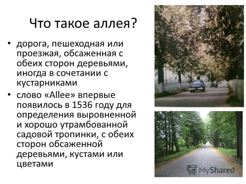 Что такое аллея? дорога, пешеходная или проезжая, обсаженная с обеих сторон деревьями, иногда в сочетании с кустарниками слово «Allee» впервые появилось в 1536 году для определения выровненной и хорошо утрамбованной садовой тропинки, с обеих сторон о