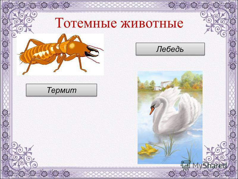 Тотемные животные Термит Лебедь