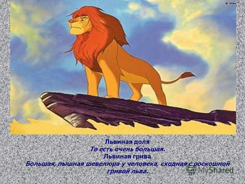 Львиная доля То есть очень большая. Львиная грива Большая, пышная шевелюра у человека, сходная с роскошной гривой льва.