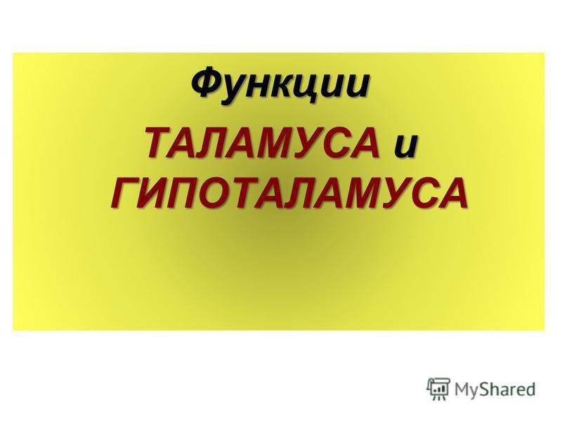 Функции ТАЛАМУСА и ГИПОТАЛАМУСА