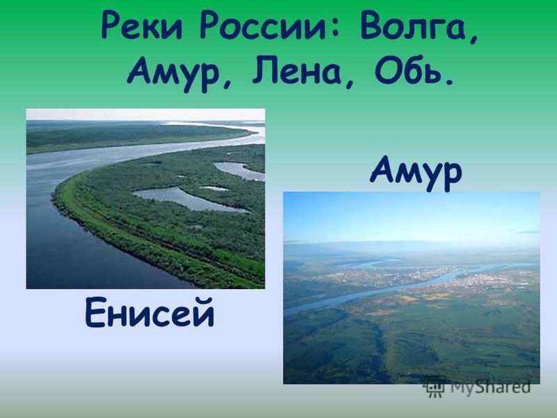 Реки России: Волга, Амур, Лена, Обь. Енисей Амур