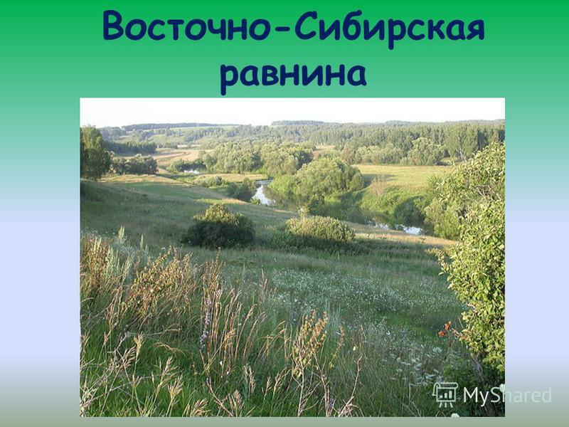 Восточно-Сибирская равнина
