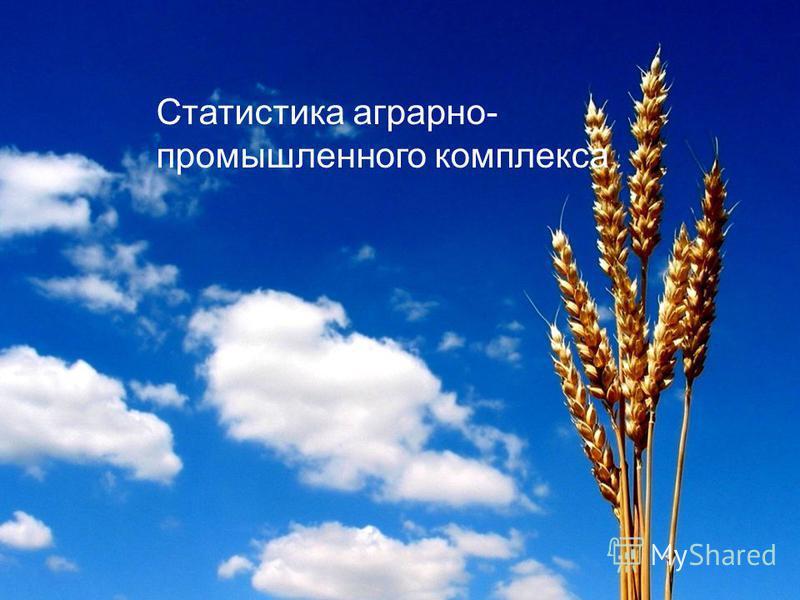 Статистика аграрно- промышленного комплекса