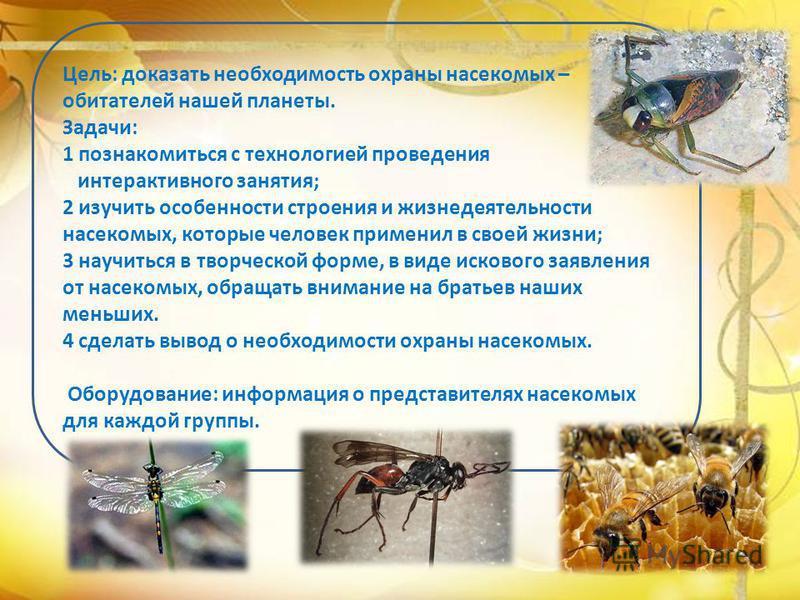 Цель: доказать необходимость охраны насекомых – обитателей нашей планеты. Задачи: 1 познакомиться с технологией проведения интерактивного занятия; 2 изучить особенности строения и жизнедеятельности насекомых, которые человек применил в своей жизни; 3