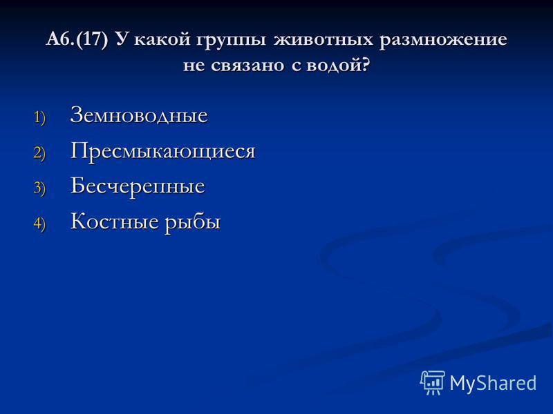 А6.(17) У какой группы животных размножение не связано с водой? 1) Земноводные 2) Пресмыкающиеся 3) Бесчерепные 4) Костные рыбы