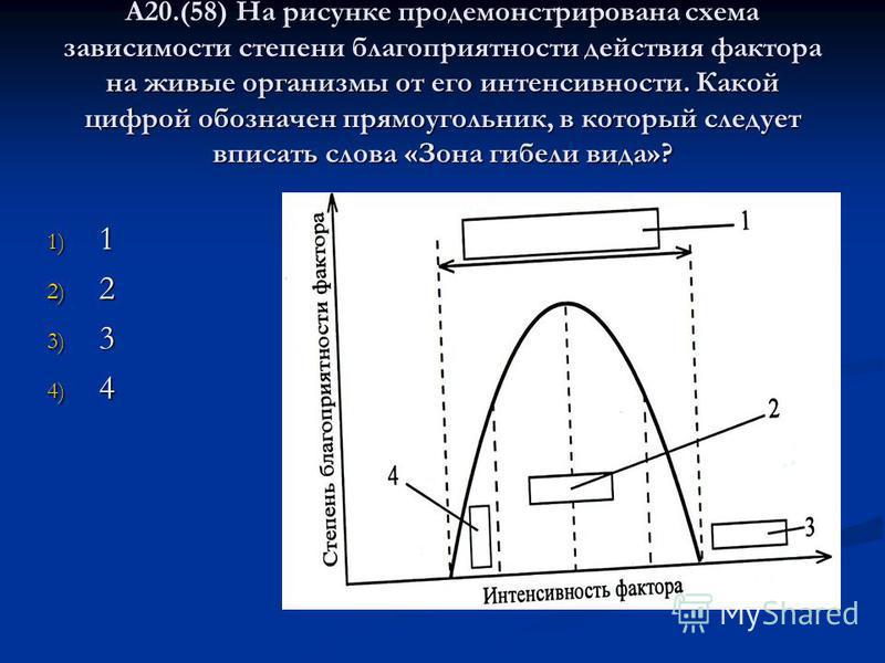 А20.(58) На рисунке продемонстрирована схема зависимости степени благоприятности действия фактора на живые организмы от его интенсивности. Какой цифрой обозначен прямоугольник, в который следует вписать слова «Зона гибели вида»? 1) 1 2) 2 3) 3 4) 4