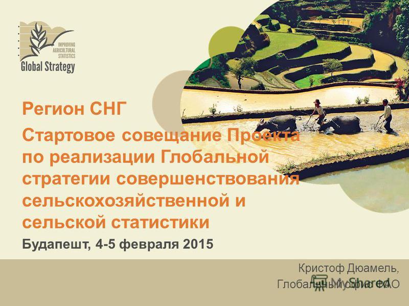 Регион СНГ Стартовое совещание Проекта по реализации Глобальной стратегии совершенствования сельскохозяйственной и сельской статистики Будапешт, 4-5 февраля 2015 Кристоф Дюамель, Глобальный офис ФАО