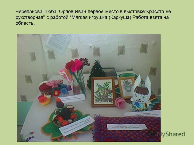 Часть работ выбрана на областную выставку Черепанова Люба, Орлов Иван-первое место в выставке Красота не рукотворная с работой Мягкая игрушка (Каркуша) Работа взята на область.