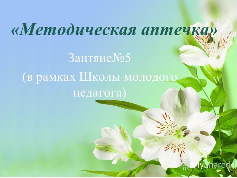 «Методическая аптечка» Зантяие 5 (в рамках Школы молодого педагога)