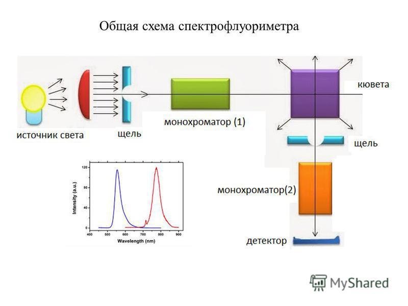 Общая схема спектрофлуориметра