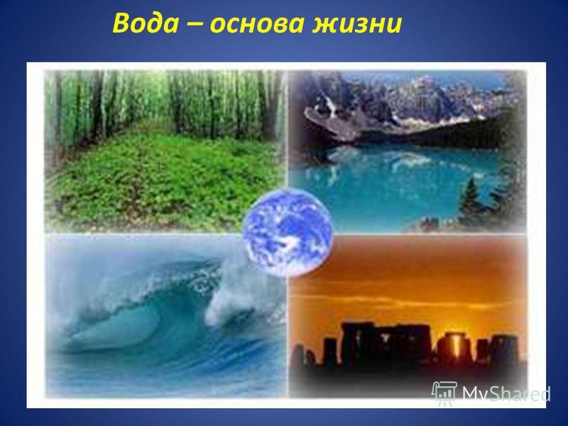 Вода – основа жизни