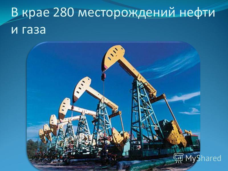 В крае 280 месторождений нефти и газа