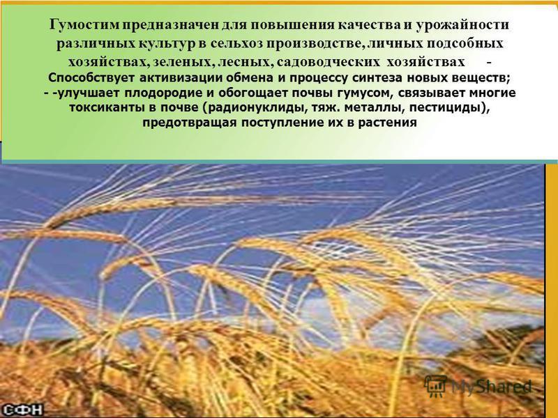 2 Гумостим предназначен для повышения качества и урожайности различных культур в сельхоз производстве, личных подсобных хозяйствах, зеленых, лесных, садоводческих хозяйствах - Способствует активизации обмена и процессу синтеза новых веществ; - -улучш