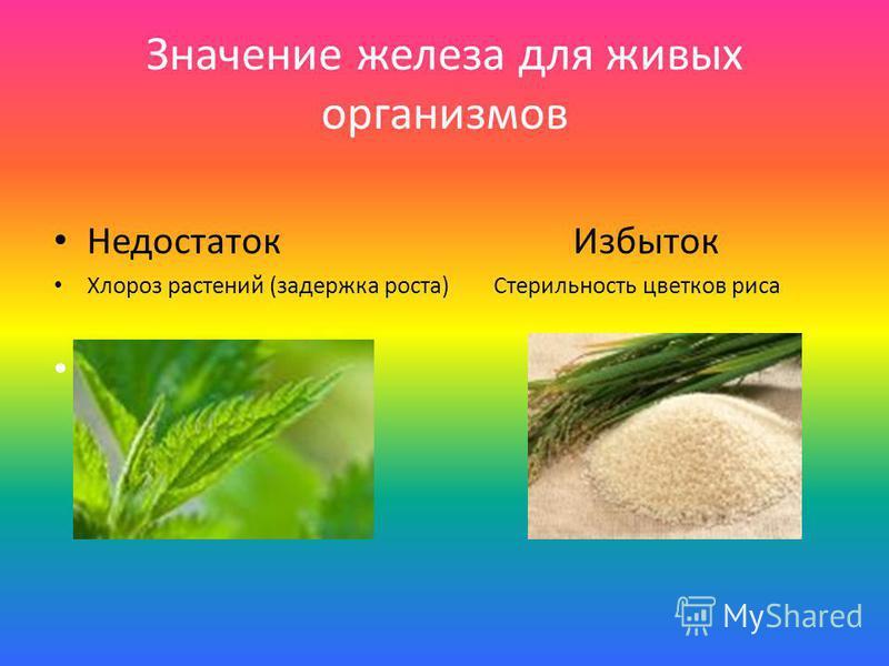 Значение железа для живых организмов Недостаток Избыток Хлороз растений (задержка роста) Стерильность цветков риса