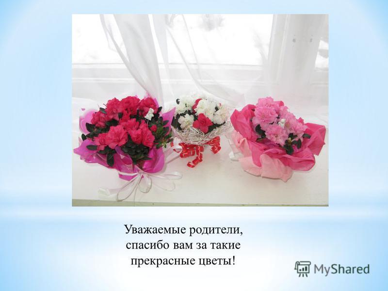 Уважаемые родители, спасибо вам за такие прекрасные цветы!