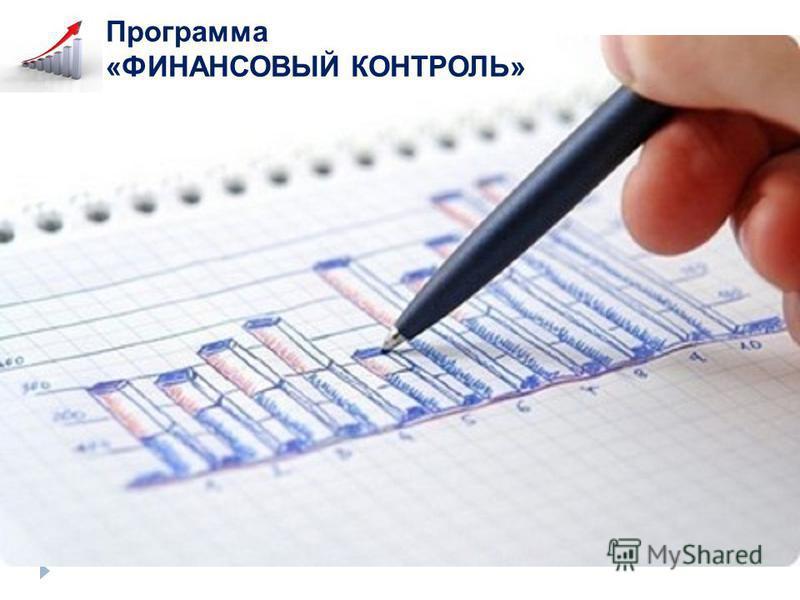 Программа «ФИНАНСОВЫЙ КОНТРОЛЬ»