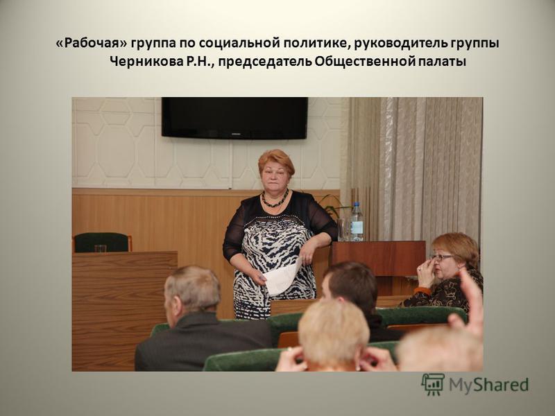 «Рабочая» группа по социальной политике, руководитель группы Черникова Р.Н., председатель Общественной палаты