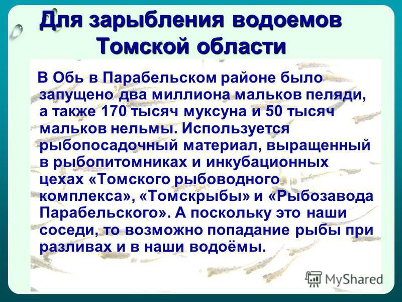 Для зарыбления водоемов Томской области В Обь в Парабельском районе было запущено два миллиона мальков пеляди, а также 170 тысяч муксуна и 50 тысяч мальков нельмы. Используется рыбопосадочный материал, выращенный в рыбопитомниках и инкубационных цеха