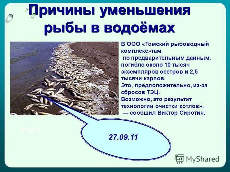 Причины уменьшения рыбы в водоёмах В ООО «Томский рыбоводный комплекс»там по предварительным данным, погибло около 10 тысяч экземпляров осетров и 2,5 тысячи карпов. Это, предположительно, из-за сбросов ТЭЦ. Возможно, это результат технологии очистки