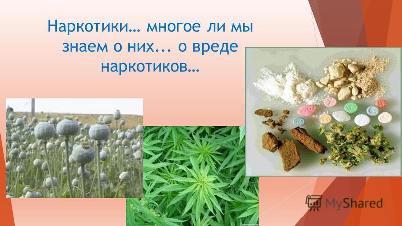 Наркотики… многое ли мы знаем о них... о вреде наркотиков…