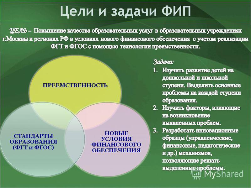 Цели и задачи ФИП