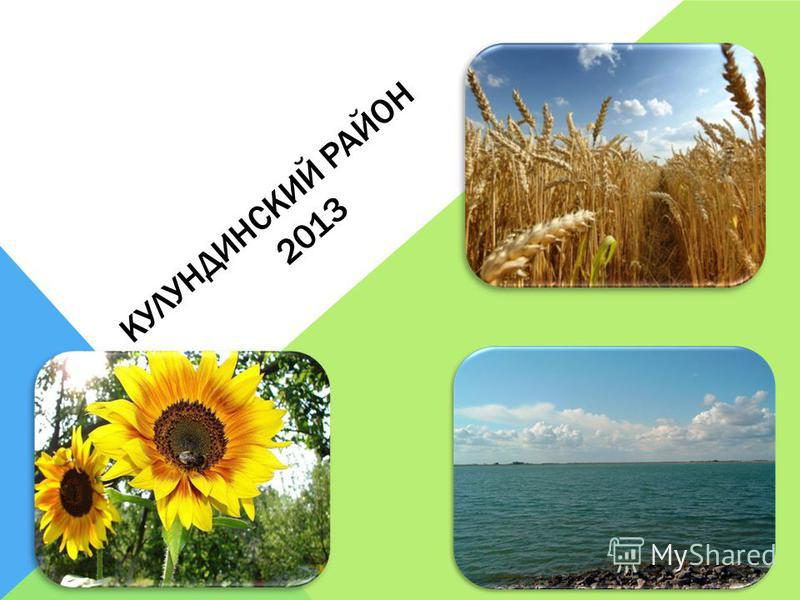 КУЛУНДИНСКИЙ РАЙОН 2013