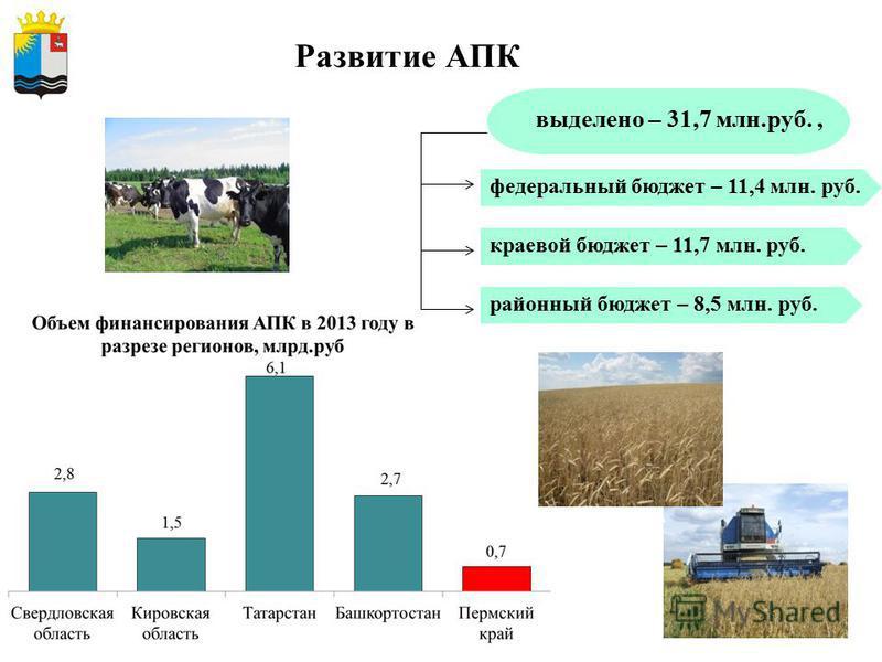 7 федеральный бюджет – 11,4 млн. руб. краевой бюджет – 11,7 млн. руб. районный бюджет – 8,5 млн. руб. Развитие АПК выделено – 31,7 млн.руб.,