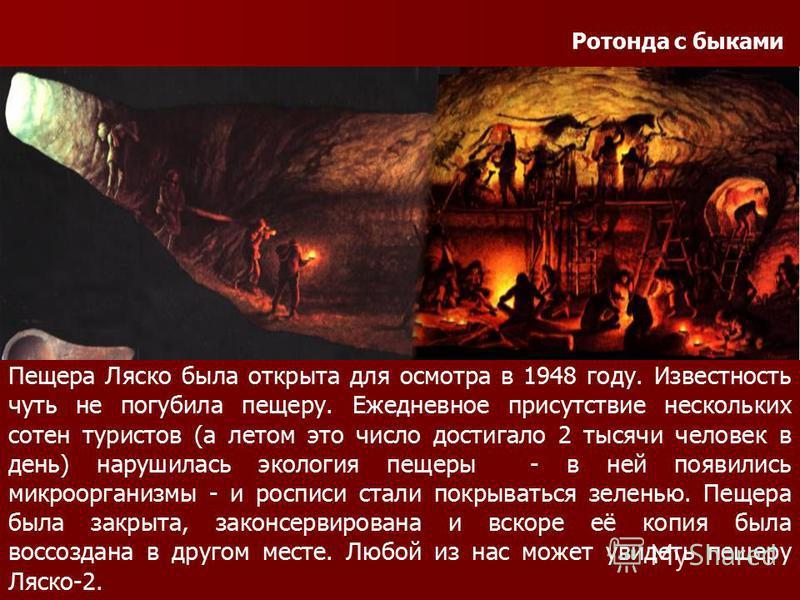 Ротонда с быками Пещера Ляско была открыта для осмотра в 1948 году. Известность чуть не погубила пещеру. Ежедневное присутствие нескольких сотен туристов (а летом это число достигало 2 тысячи человек в день) нарушилась экология пещеры - в ней появили