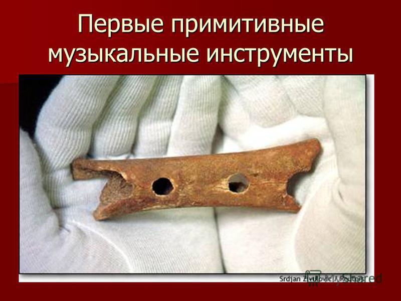 Первые примитивные музыкальные инструменты