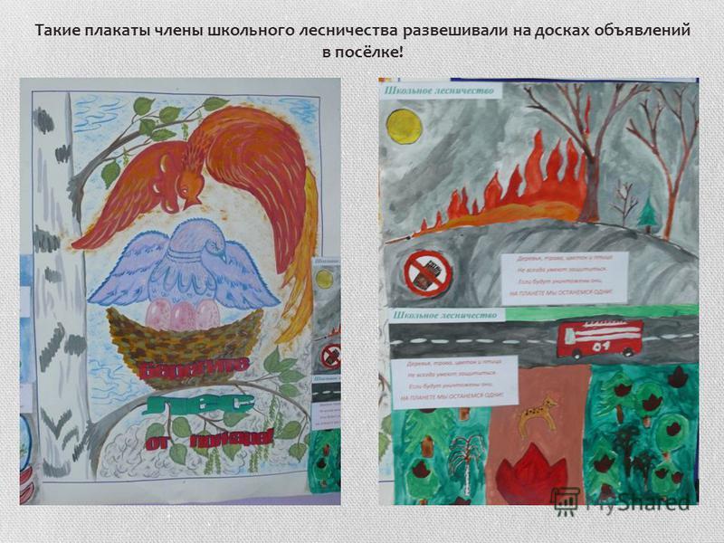 Такие плакаты члены школьного лесничества развешивали на досках объявлений в посёлке!