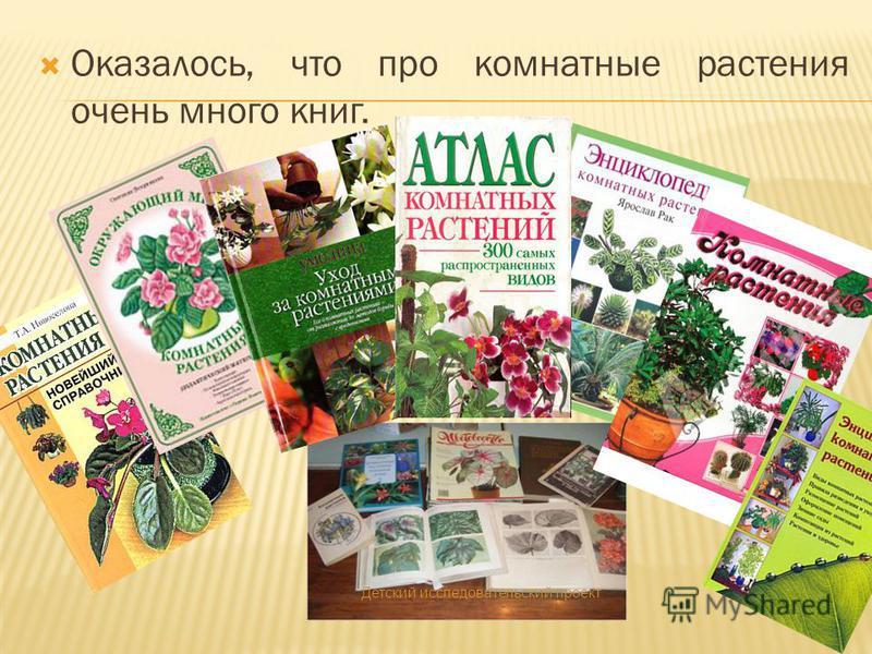 Оказалось, что про комнатные растения очень много книг. Детский исследовательский проект