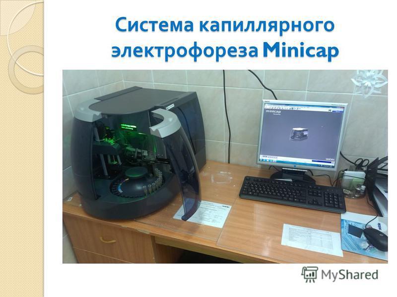Система капиллярного электрофореза Minicap