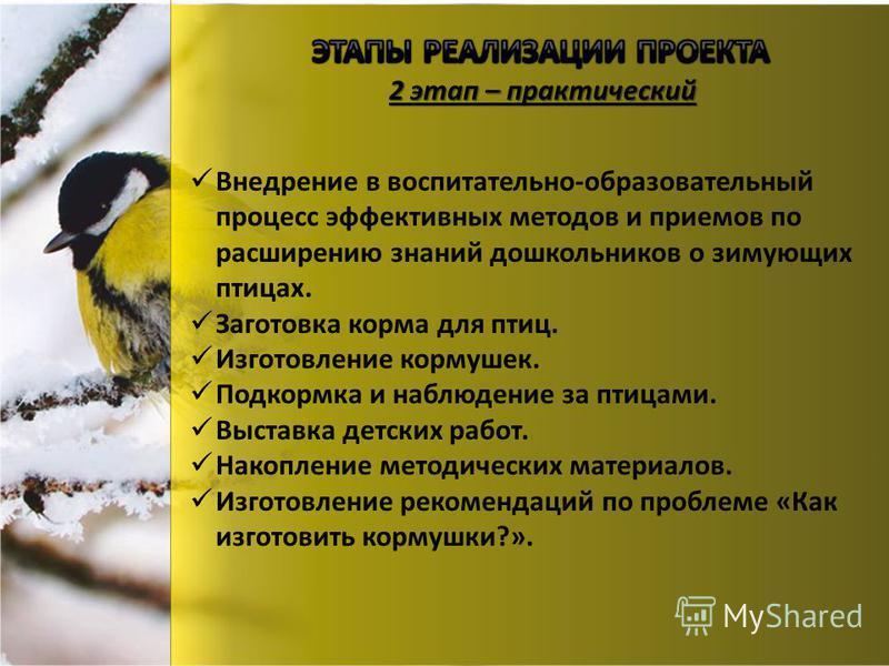 2 этап – практический Внедрение в воспитательно-образовательный процесс эффективных методов и приемов по расширению знаний дошкольников о зимующих птицах. Заготовка корма для птиц. Изготовление кормушек. Подкормка и наблюдение за птицами. Выставка де