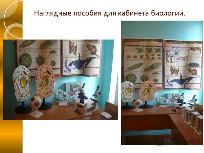 Наглядные пособия для кабинета биологии.