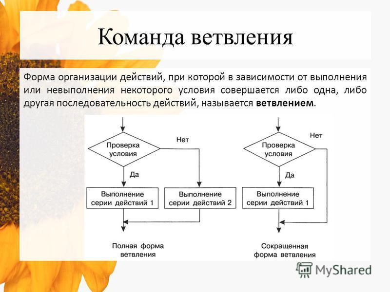Команда ветвления Форма организации действий, при которой в зависимости от выполнения или невыполнения некоторого условия совершается либо одна, либо другая последовательность действий, называется ветвлением.