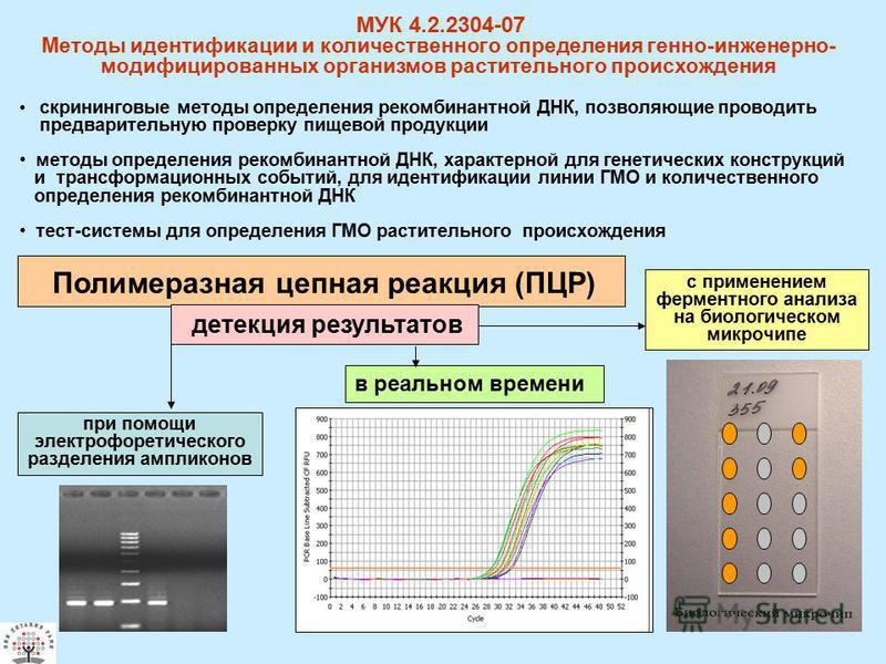 Полимеразная цепная реакция (ПЦР) с применением ферментного анализа на биологическом микрочипе в реальном времени при помощи электрофоретического разделения ампликонов МУК 4.2.2304-07 Методы идентификации и количественного определения генно-инженерно