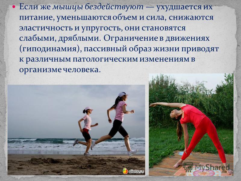 Если же мышцы бездействуют ухудшается их питание, уменьшаются объем и сила, снижаются эластичность и упругость, они становятся слабыми, дряблыми. Ограничение в движениях (гиподинамия), пассивный образ жизни приводят к различным патологическим изменен