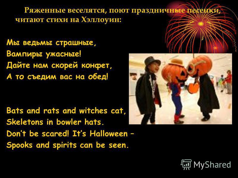 Даже у домашних животных настроение Хэллоуина