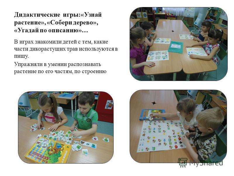 Дидактические игры:«Узнай растение», «Собери дерево», «Угадай по описанию»… В играх знакомили детей с тем, какие части дикорастущих трав используются в пищу. Упражняли в умении распознавать растение по его частям, по строению