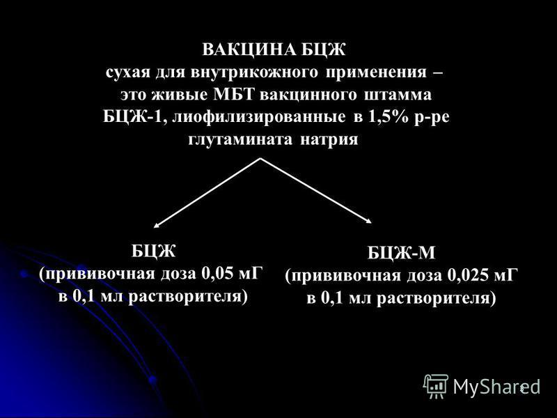3 ВАКЦИНА БЦЖ сухая для внутрикожного применения – это живые МБТ вакцинного штамма БЦЖ-1, лиофилизированные в 1,5% р-ре глутамината натрия БЦЖ (прививочная доза 0,05 мГ в 0,1 мл растворителя) БЦЖ-М (прививочная доза 0,025 мГ в 0,1 мл растворителя)