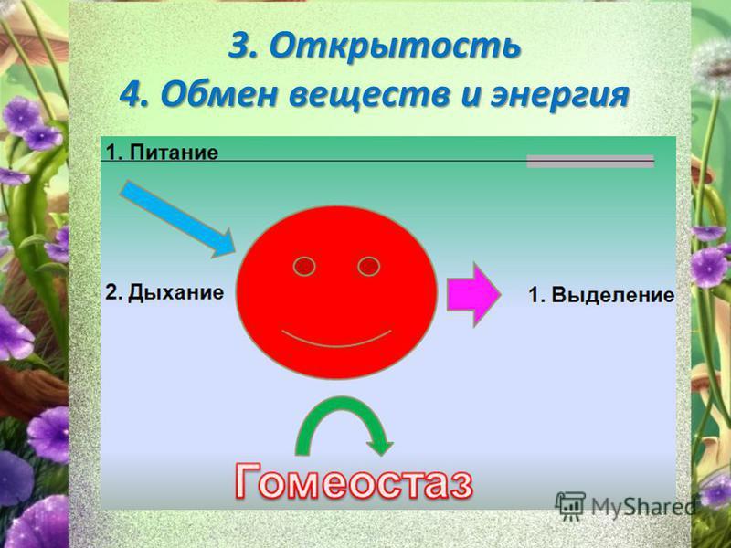 3. Открытость 4. Обмен веществ и энергия