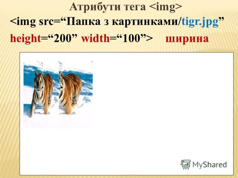 Атрибути тега <img src=Папка з картынками/tigr.jpg height=200 width=100> ширина