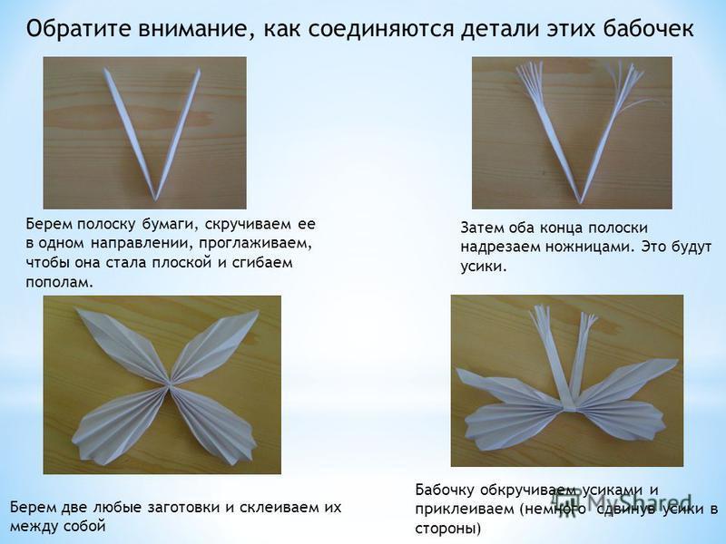 Затем оба конца полоски надрезаем ножницами. Это будут усики. Обратите внимание, как соединяются детали этих бабочек Берем полоску бумаги, скручиваем ее в одном направлении, проглаживаем, чтобы она стала плоской и сгибаем пополам. Берем две любые заг