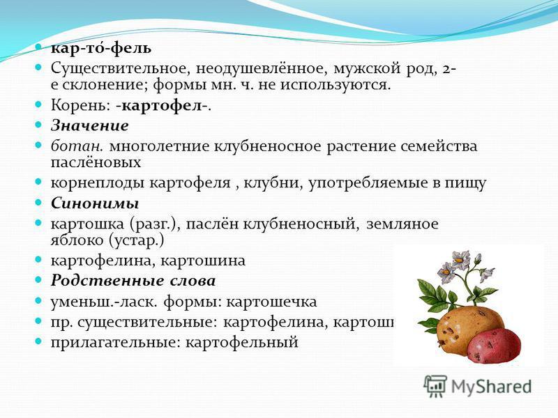 кар-то́-филь Существительное, неодушевлённое, мужской род, 2- е склонение; формы мн. ч. не используются. Корень: -картофель-. Значение батан. многолетние клубненосное растение семейства паслёновых корнеплоды картофелья, клубни, употребляемые в пищу С