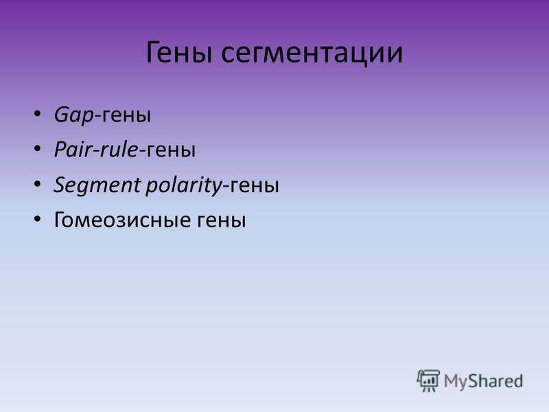 Гены сегментации Gap-гены Pair-rule-гены Segment polarity-гены Гомеозисные гены